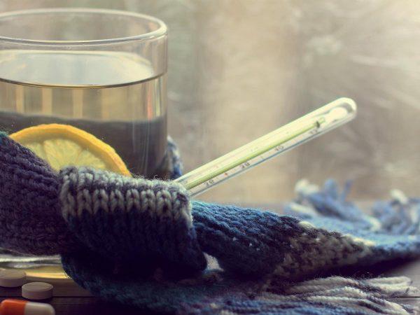 I consigli per combattere l'influenza con l'alimentazione