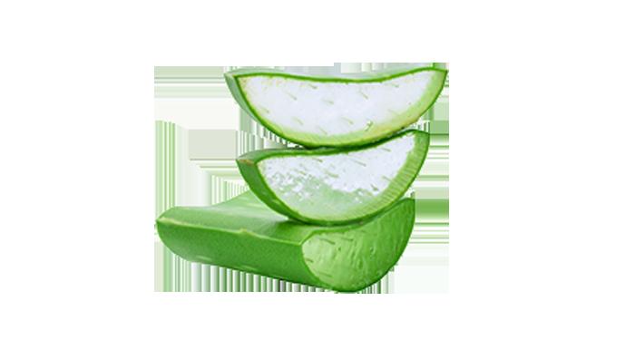 immagine frutto