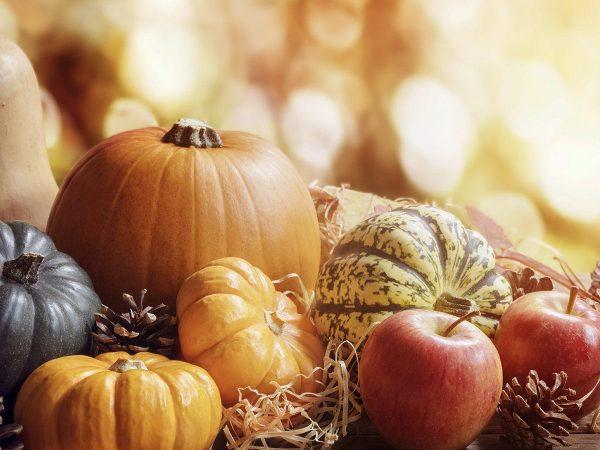 Dieta d'autunno: affrontare il cambio di stagione a tavola