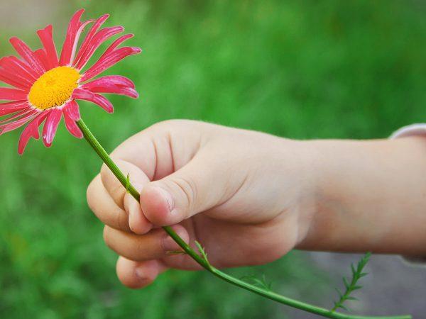 Insegnare ai bambini la serenità: i Giochi della Gentilezza