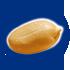 icona frutto