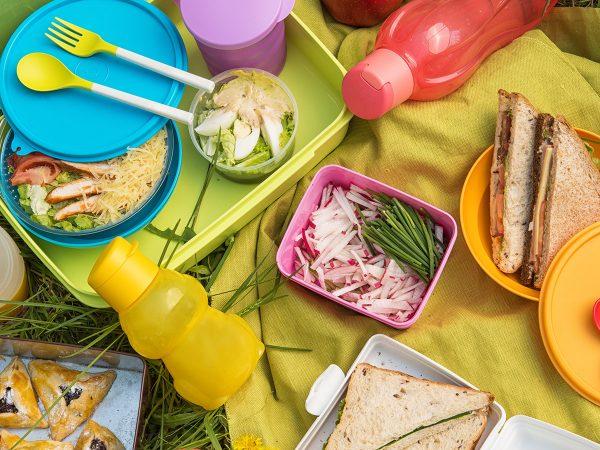 set picnic ecologico stoviglie lavabili