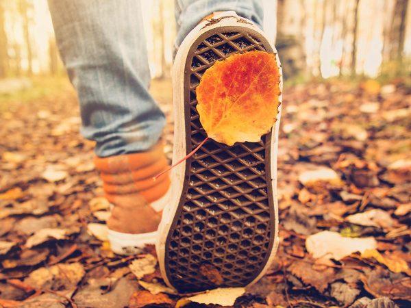#cominciodame: iniziare una nuova vita? Prova in autunno