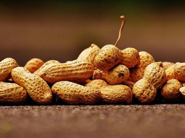 Proprietà delle arachidi: scopriamo le noccioline americane!